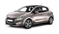 Peugeot 208 Fuel Rails