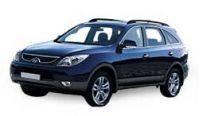 Hyundai ix55 Diesel Fuel Pumps