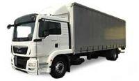 MAN TGM Diesel Fuel Pumps Van Truck
