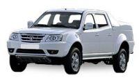 Tata Xenon Diesel Fuel Injectors