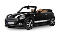 Mini Convertible Towbars