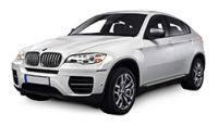 BMW X6 Diesel Fuel Injectors