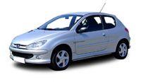 Peugeot 206 Fuel Rails