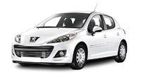 Peugeot 207 Fuel Rails